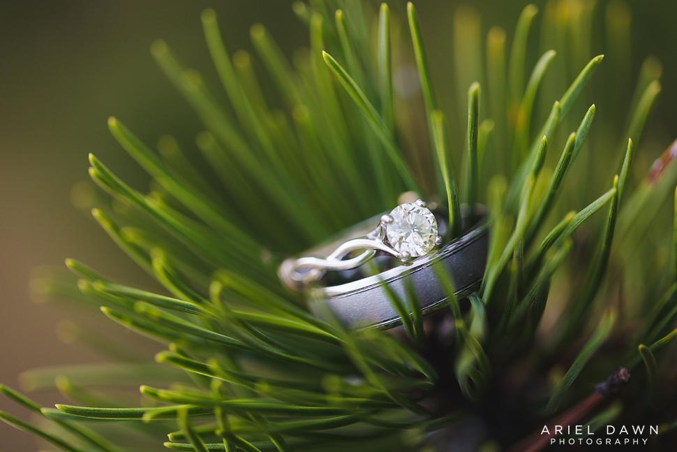 Bend Oregon Engagement Ring Photographer (5).jpg