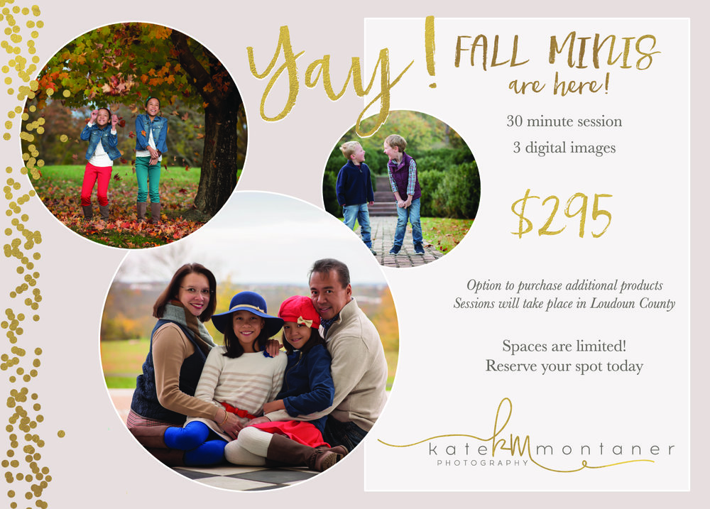 Fall-Mini-Session-Northern-Virginia-Family-and-children-photographer-Kate-Montaner-Photography