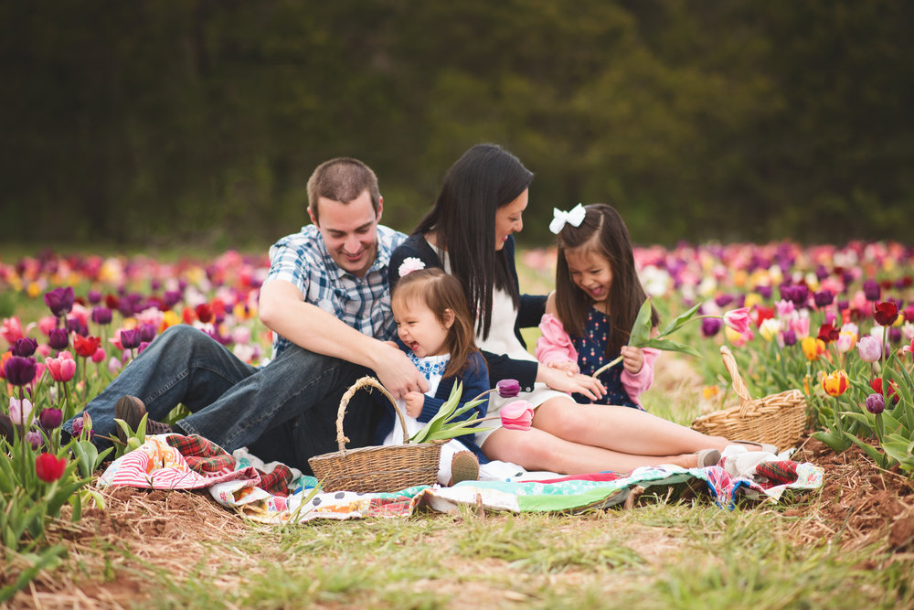 family-tickle-fight-tulip-session-kate-montaner-photography-family-portraits-northern-virginia