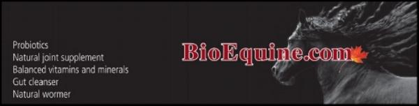 bioequine-banner_2.jpg