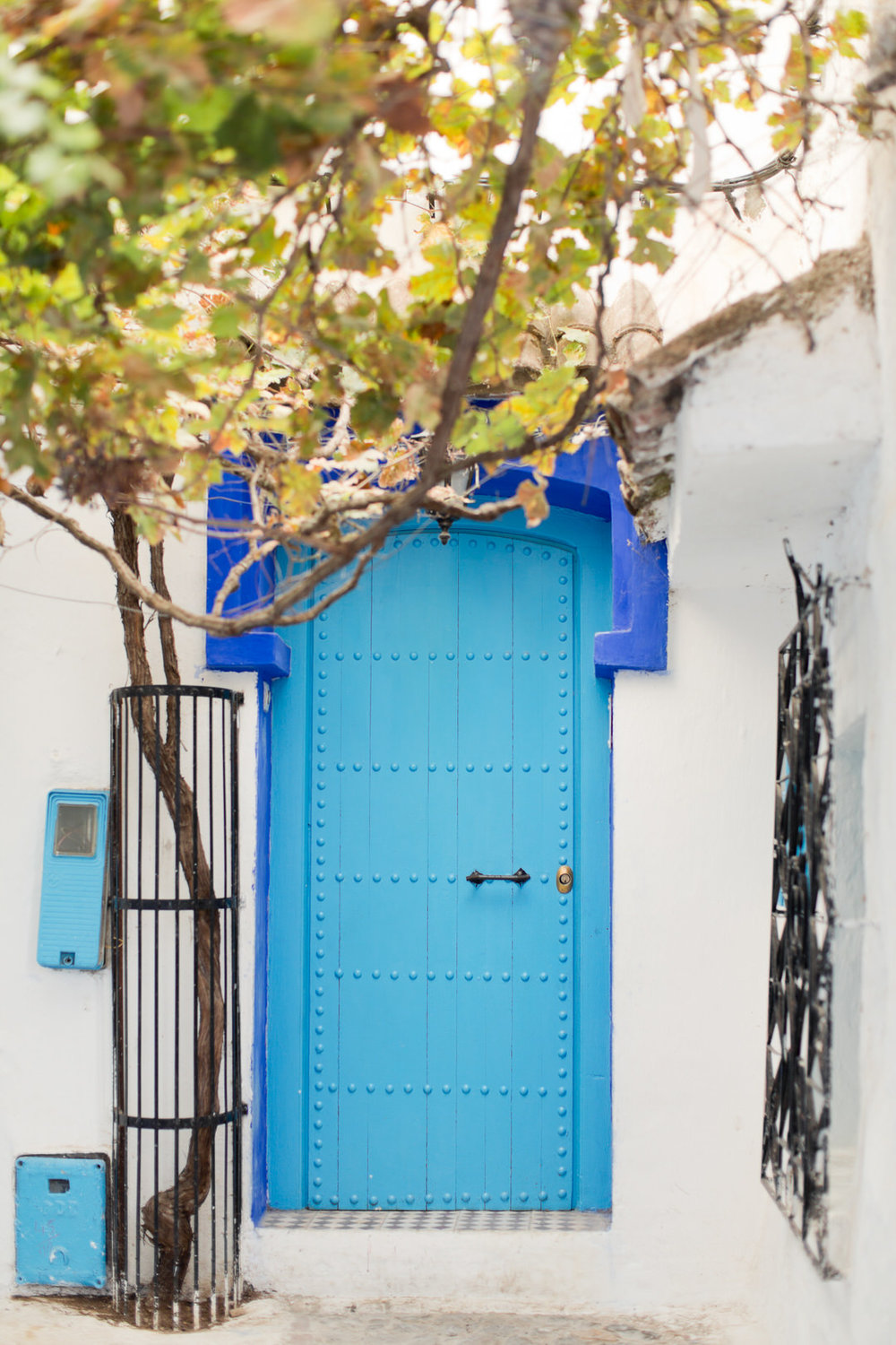 Melissa Kruse Photography - Chefchaouen Morocco (web)-49.jpg