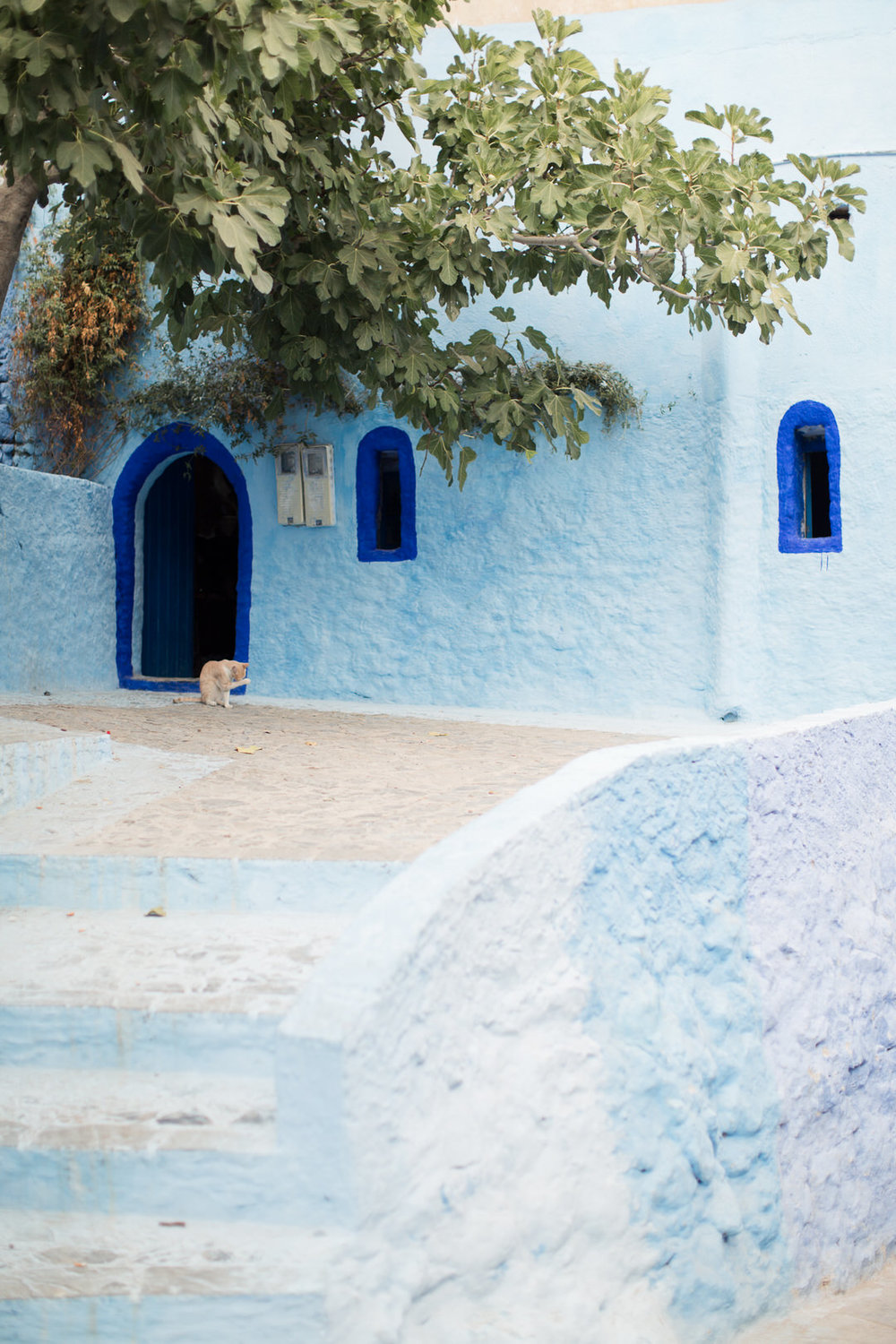Melissa Kruse Photography - Chefchaouen Morocco (web)-86.jpg