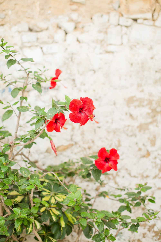 Melissa Kruse Photography - Asilah Morocco (Web)-14.jpg