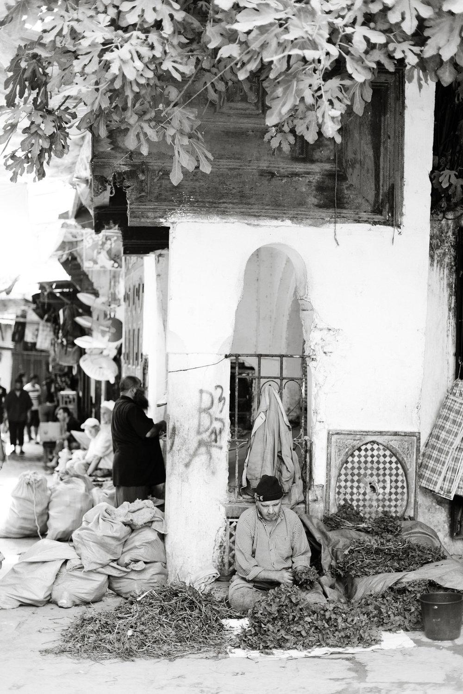 Melissa Kruse Photography - Fez Morocco (web)-72-1.jpg