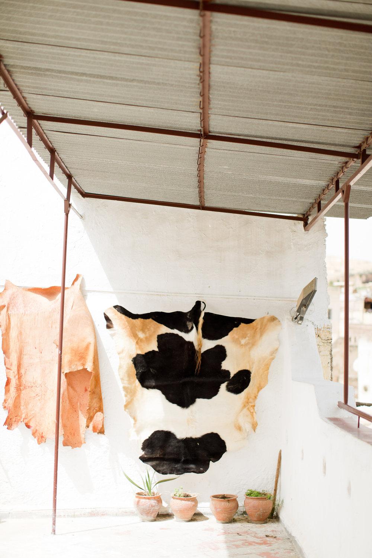 Melissa Kruse Photography - Fez Morocco (web)-120-1.jpg