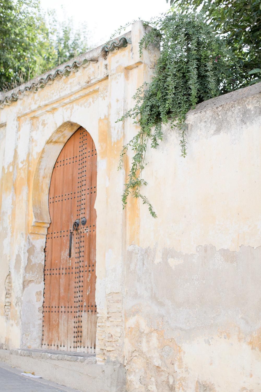 Melissa Kruse Photography - Fez Morocco (web)-134-1.jpg