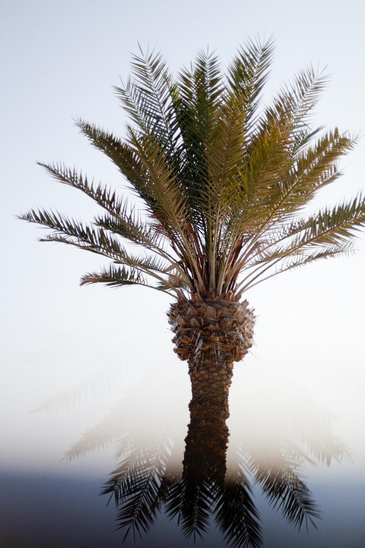 Melissa Kruse Photography - Doha Qatar-28.jpg