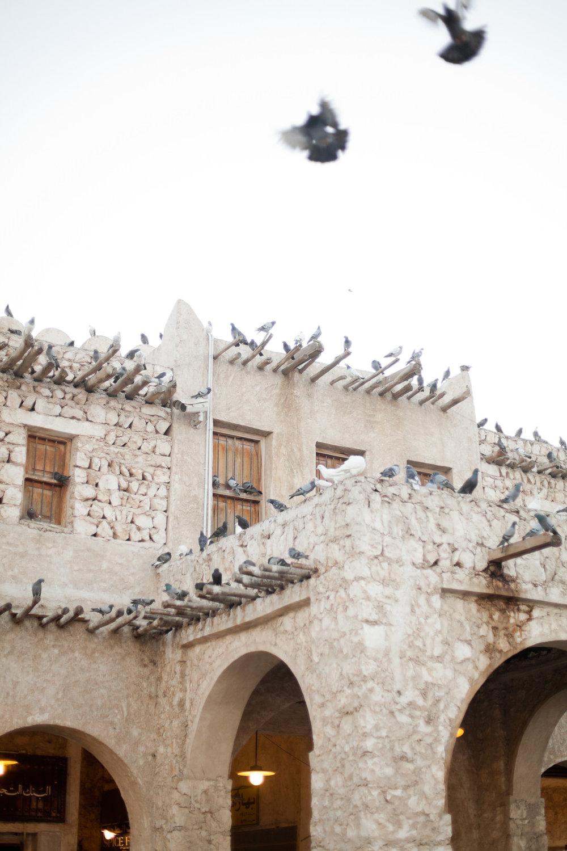 Melissa Kruse Photography - Doha Qatar-30.jpg