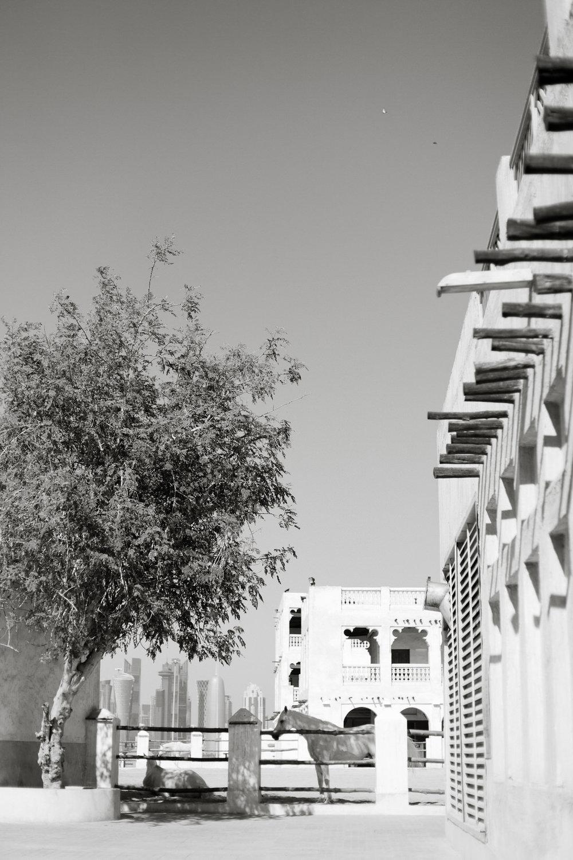 Melissa Kruse Photography - Doha Qatar-112.jpg