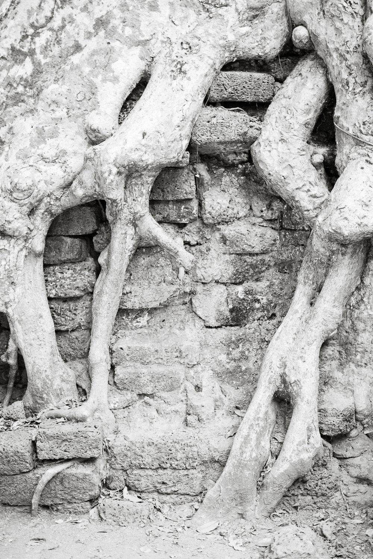 Melissa Kruse Photography - Siem Reap Cambodia Angkor Wat-10.jpg