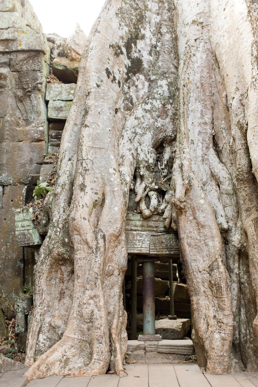 Melissa Kruse Photography - Siem Reap Cambodia Angkor Wat-22.jpg