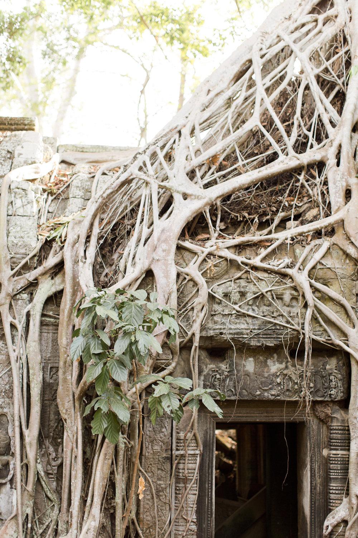 Melissa Kruse Photography - Siem Reap Cambodia Angkor Wat-26.jpg