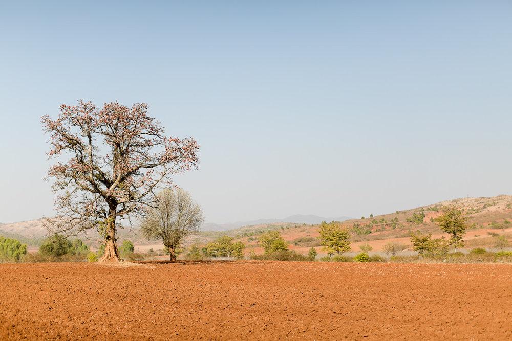 Melissa Kruse Photography - Myanmar-210.jpg