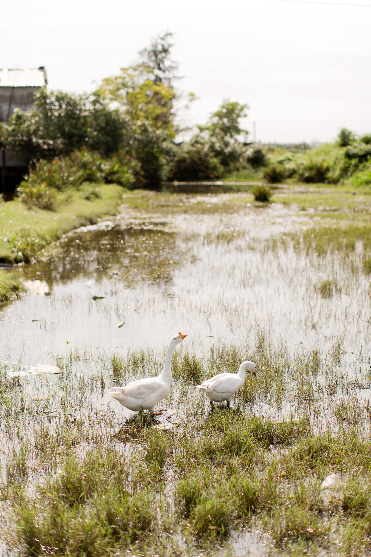Melissa Kruse Photography - Vietnam-78.jpg