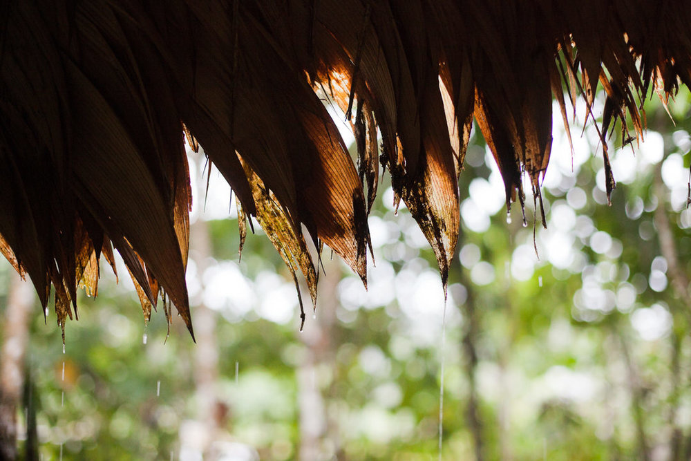 melissa kruse photography - chinimp tuna station, amazon, ecuador-4.jpg