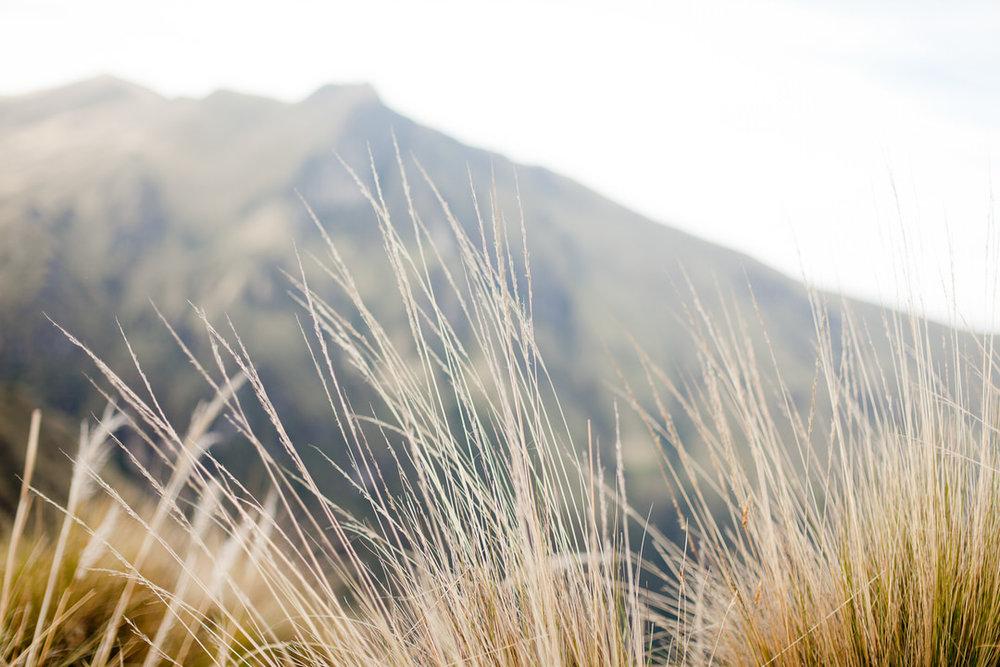 melissa kruse photography - quito, ecuador-15.jpg