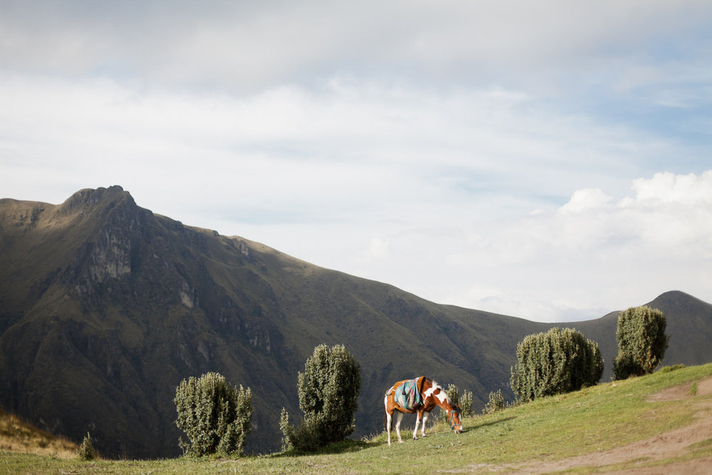 melissa kruse photography - quito, ecuador-25.jpg