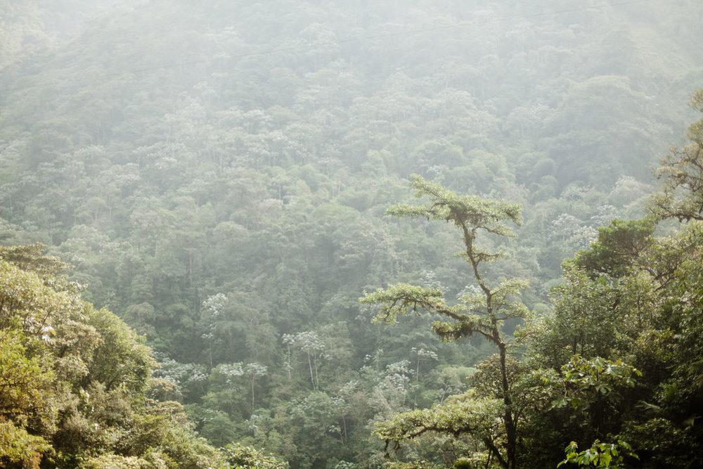 melissa kruse photography - Banos, Ecuador-39.jpg