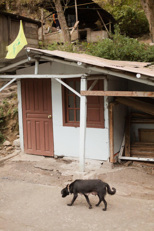 melissa kruse photography - Banos, Ecuador-47.jpg