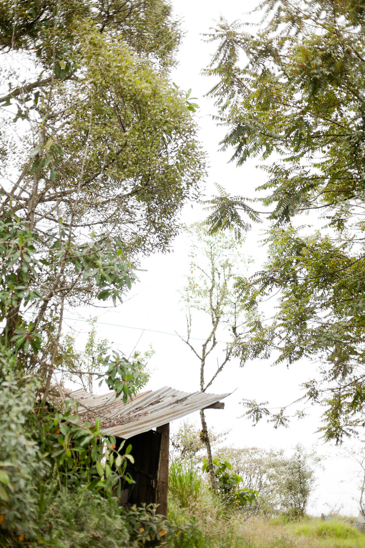melissa kruse photography - Banos, Ecuador-64.jpg