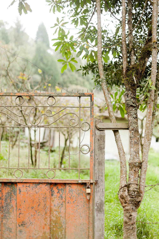 melissa kruse photography - Banos, Ecuador-79.jpg