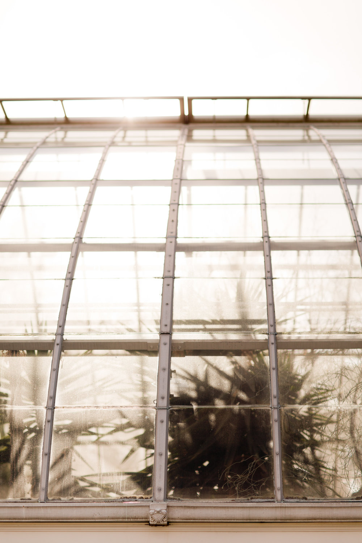 Melissa Kruse Photography - New York Botanical Garden Orchid Show-49.jpg