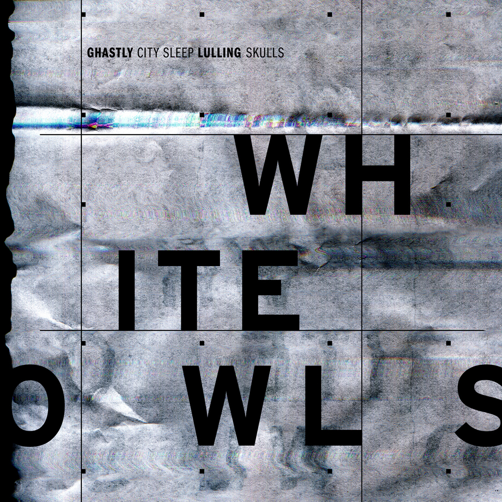WhiteOwls.jpg