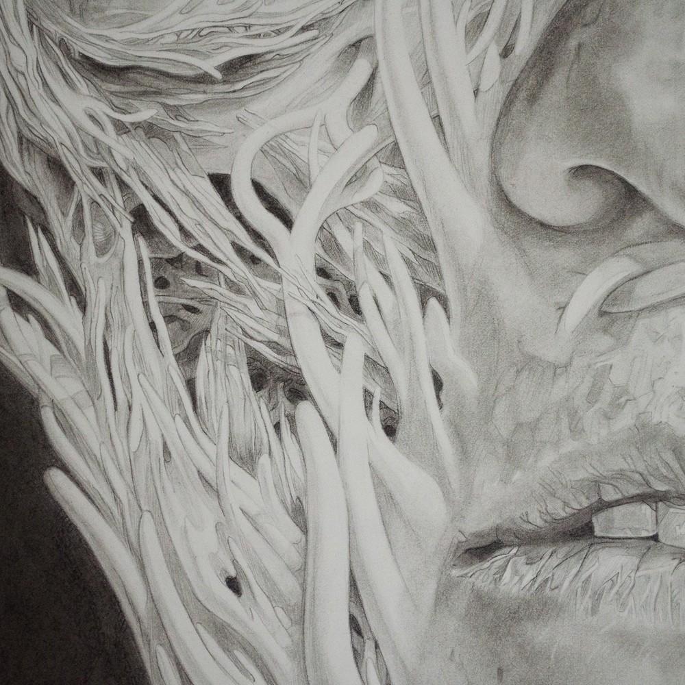Anatomical detail