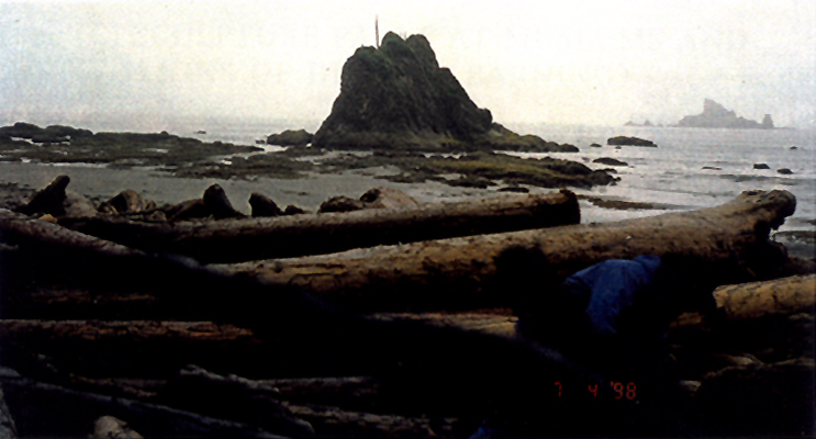 Gathering Firewood - Hole in The Wall, Olympic National Park, WA. Self Portrait, Tony Paterson