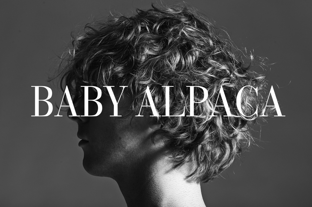 MUSIC  Baby Alpaca is a summery medley of heartwarming dreams, alluring undertones, and haunting rhythms, all wrapped up in ethereal goodness.