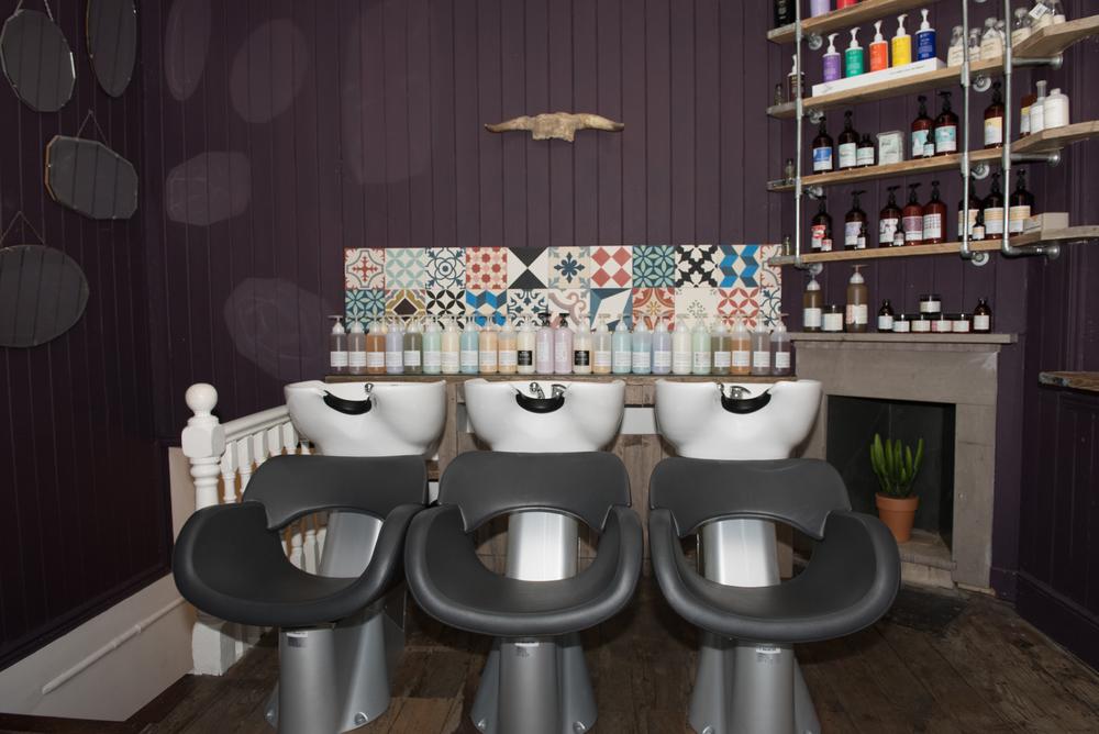 Seed Salon-2.jpg