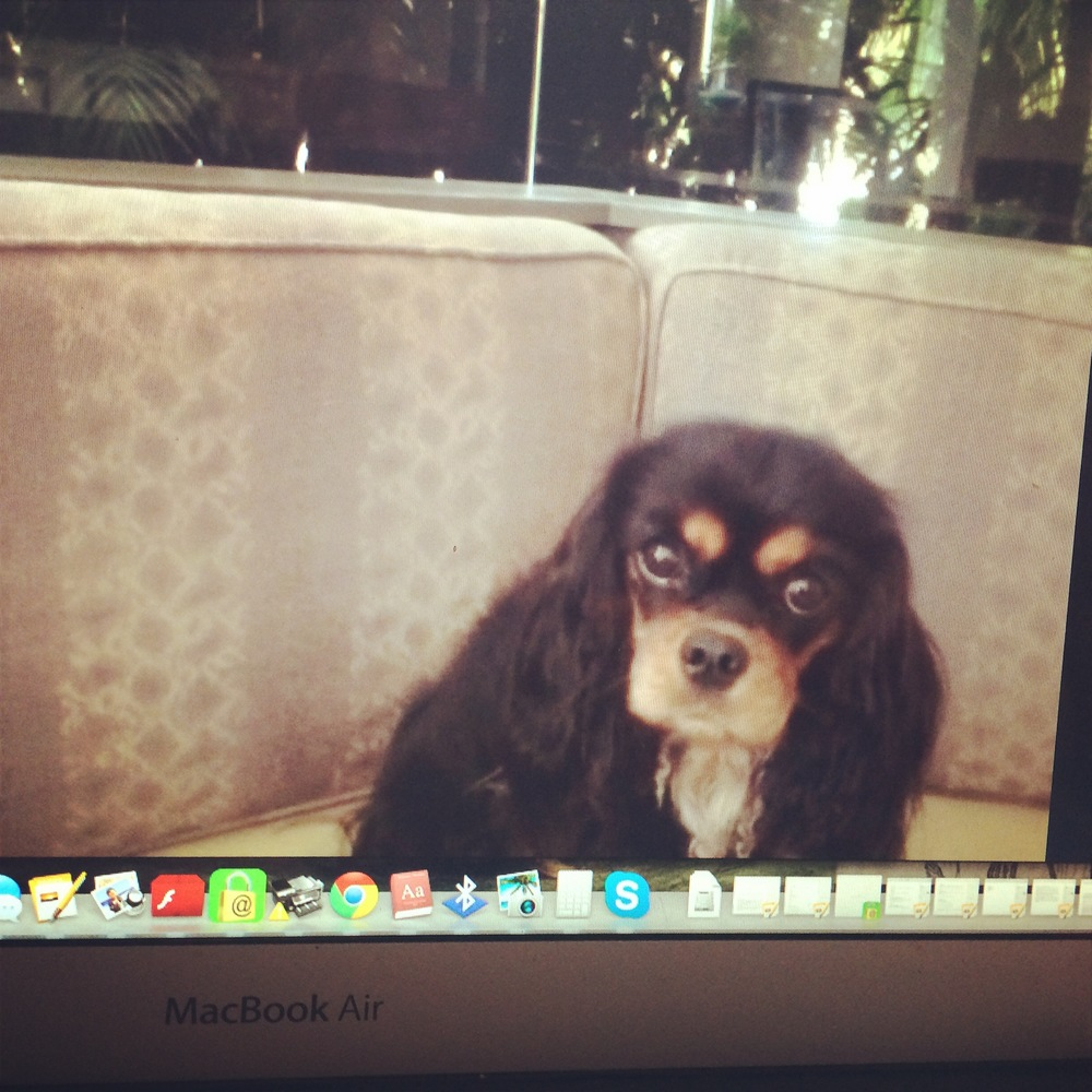 Skype'ing with Gracie, of course
