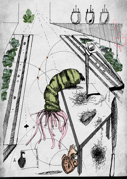Biophilia_VeronicaRanner_Illustration1.png