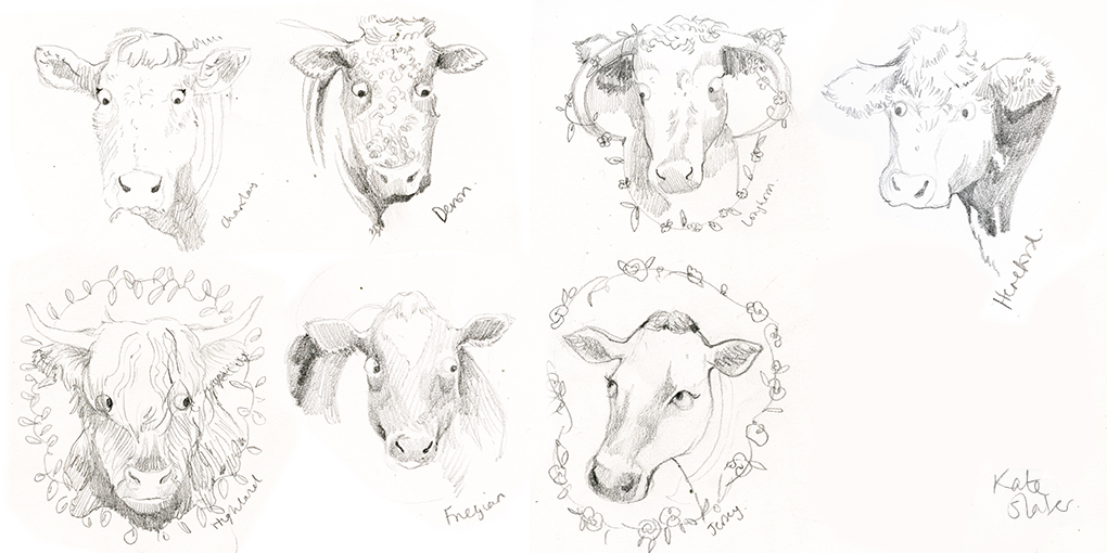 Cows and Flowers — Kate Slater Illustration