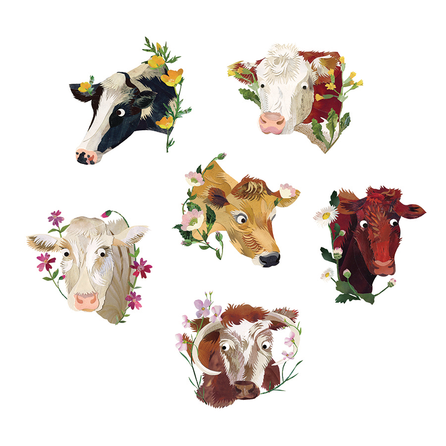 Cows © Kate Slater