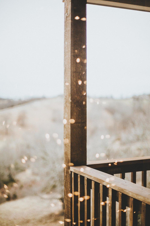 CHRISTMAS LIGHT REFLECTIONS //