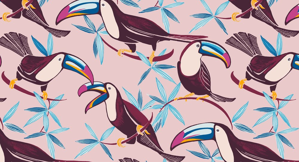 newtoucans_colorway9.jpg