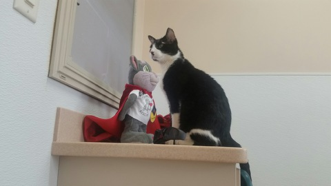Kitty & SK.jpeg