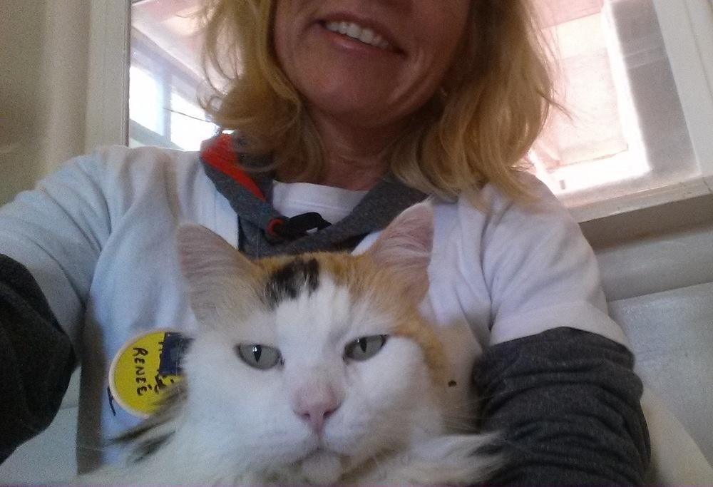 Renee Cat Lap.jpg