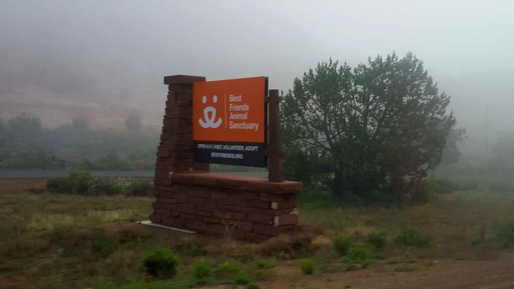 Fog at BF.jpg