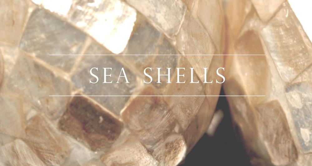 SeaShells_long.jpg