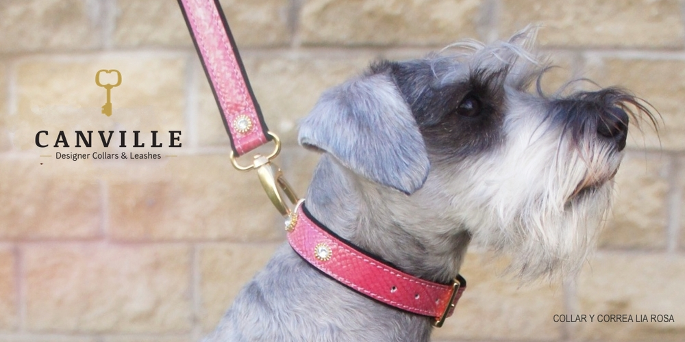 Lia patent leather collar in pink.