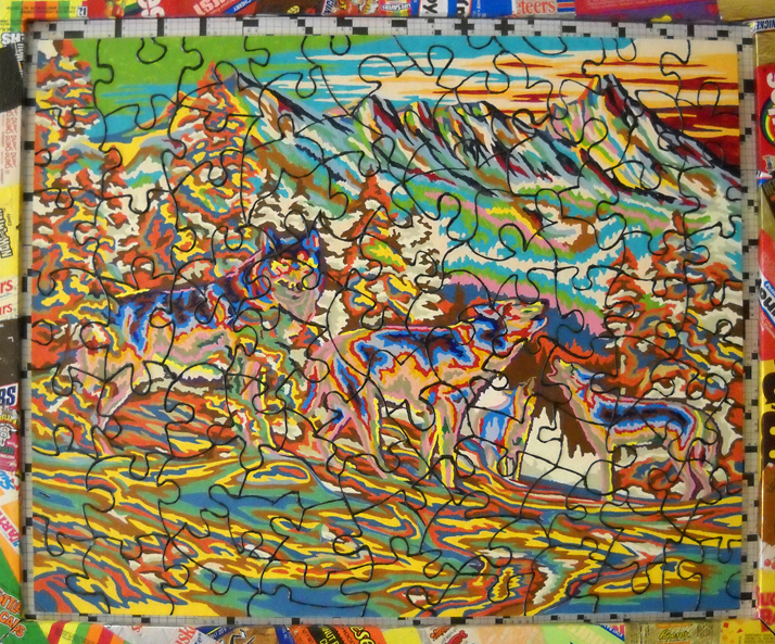 "Call of The Wild, 23""x19"", acrylic paint by numbers, candy wrappers, crossword puzzles, 2009"
