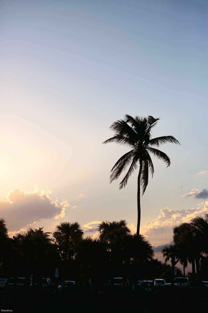 Florida_20171122_0938ae.jpg