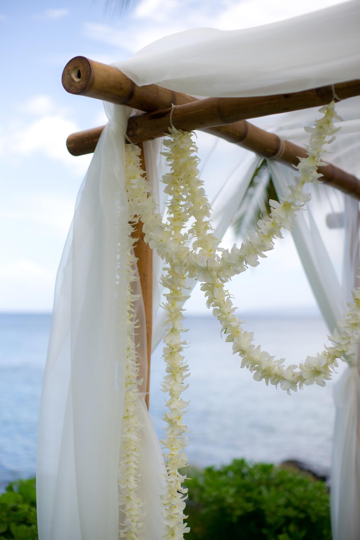 6.12.11 Wedding-198.jpg
