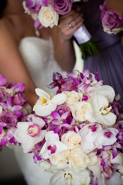 purple_015.jpg