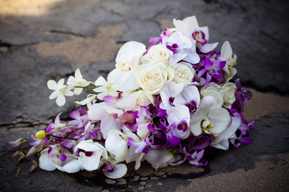 purple_028.jpg