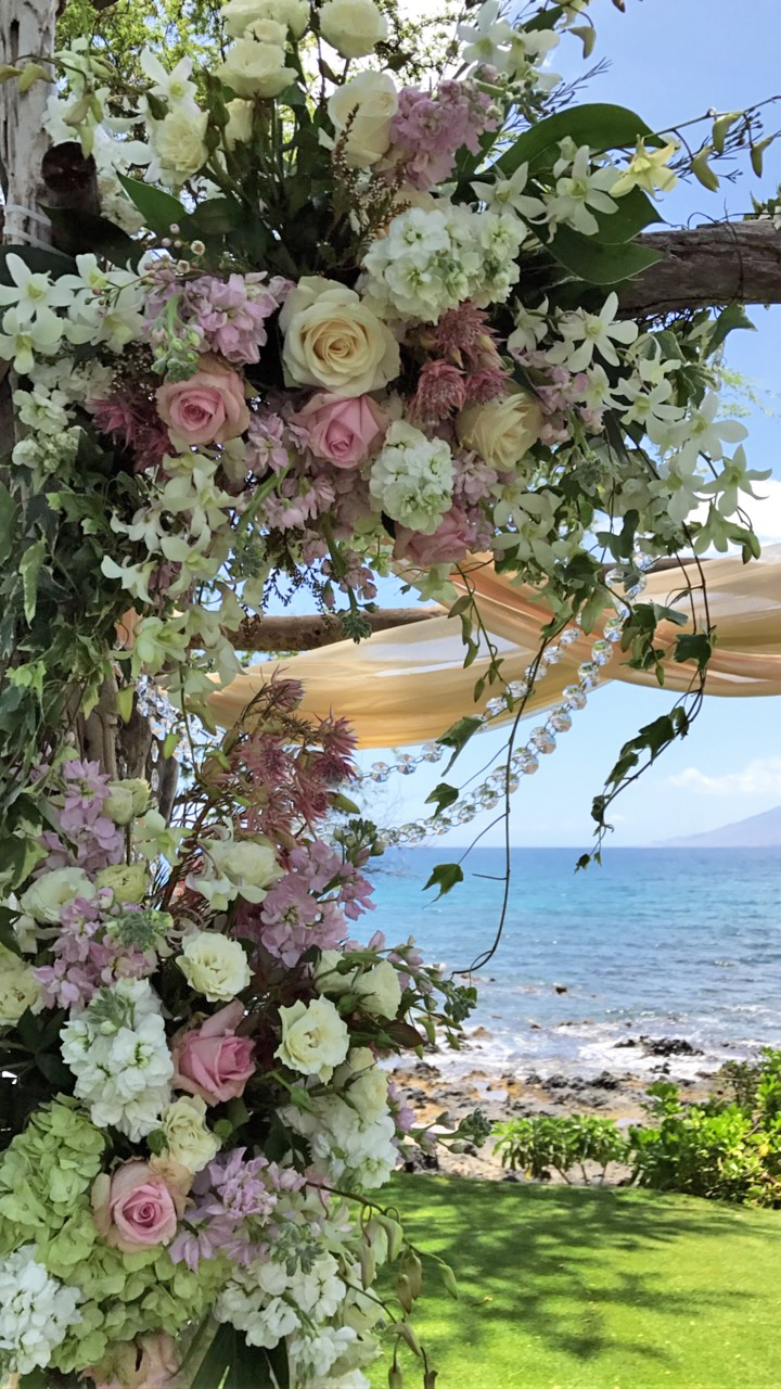flowers on a driftwood arch, by the sea.  Maui.