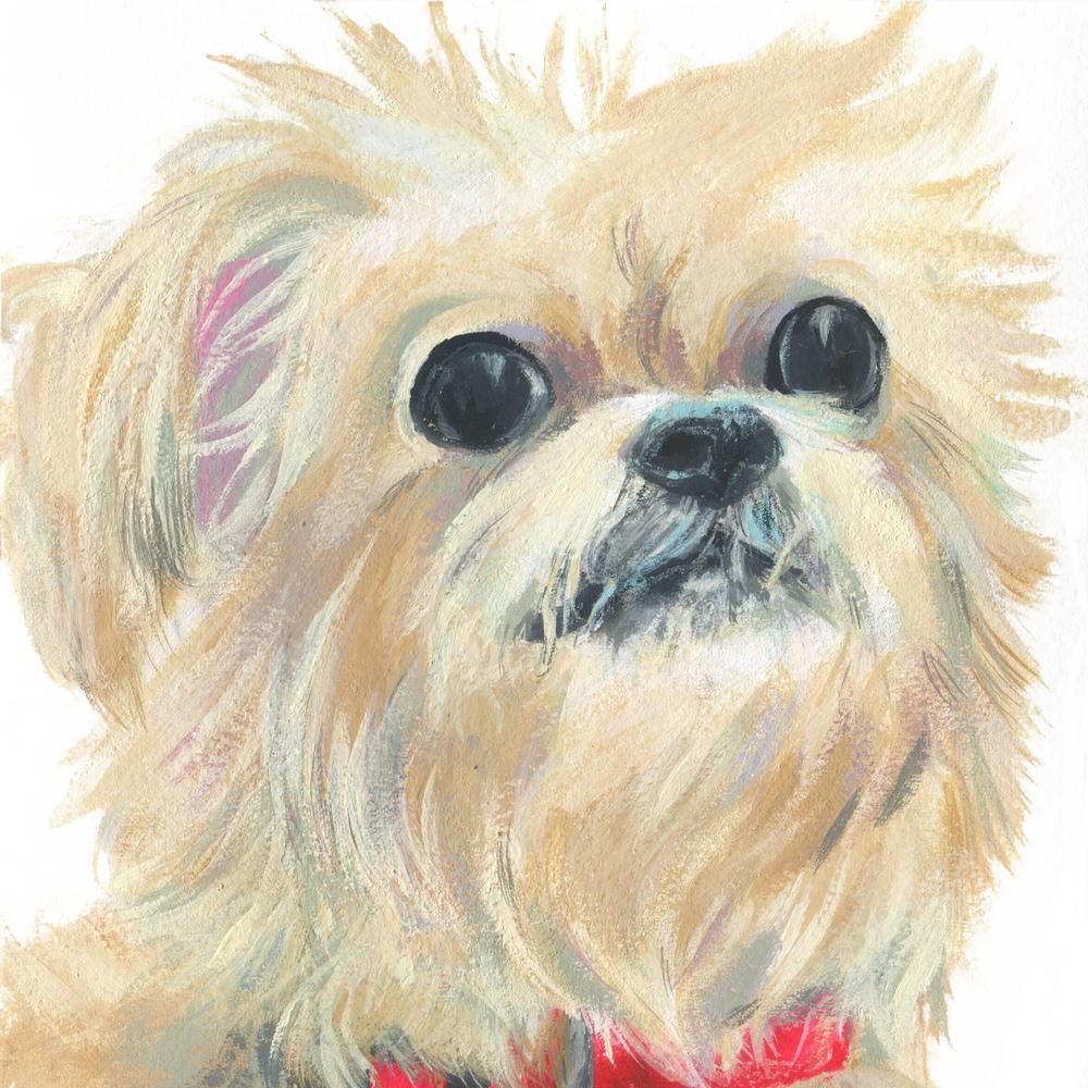 Pet Portrait_Sheri Maven.jpg
