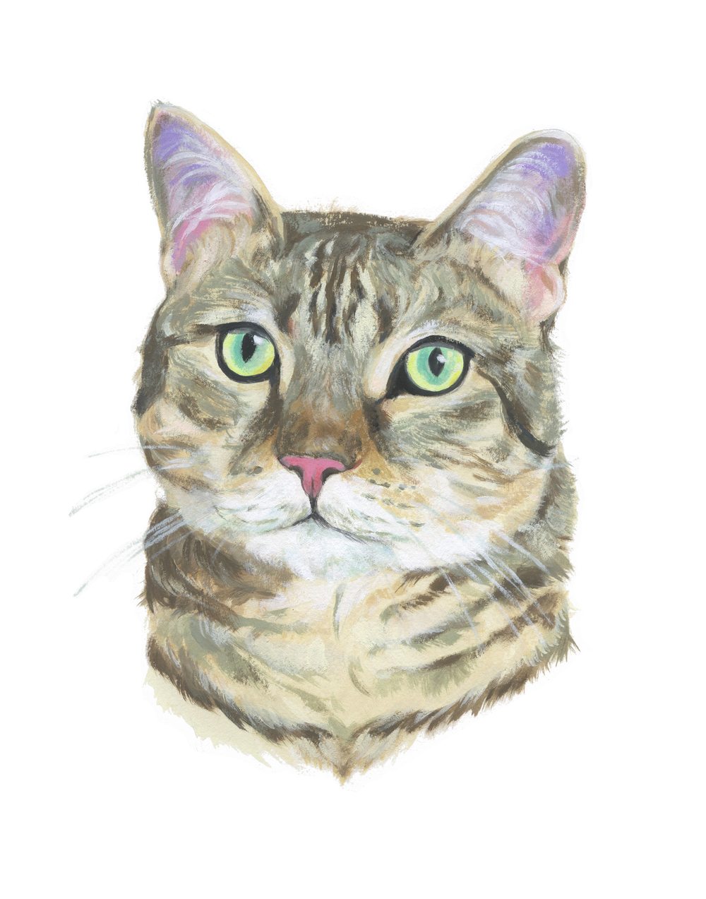 Pet Portrait_Sean Hallerud.jpg